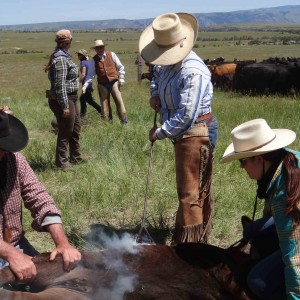 Cattle-drive-ranch-weeks-gallery-01